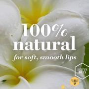Burt's Bees Tinted Lip Balm (forskellige nuancer) - Sweet Violet